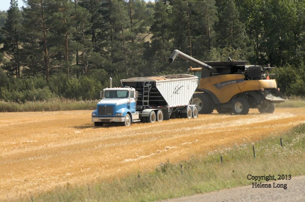 combine and grain truck