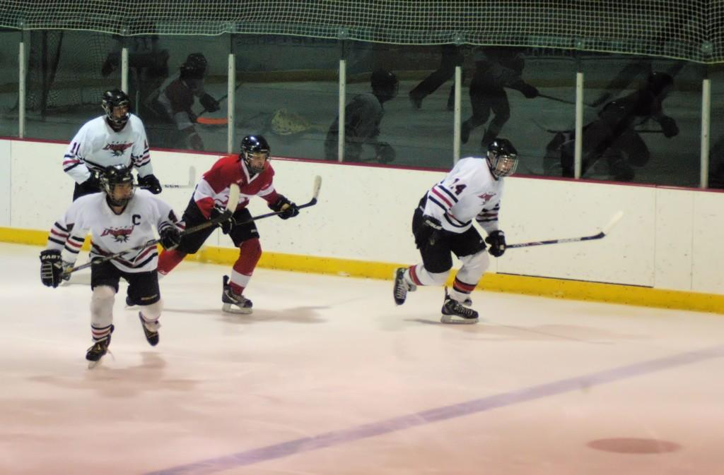 rink hockey