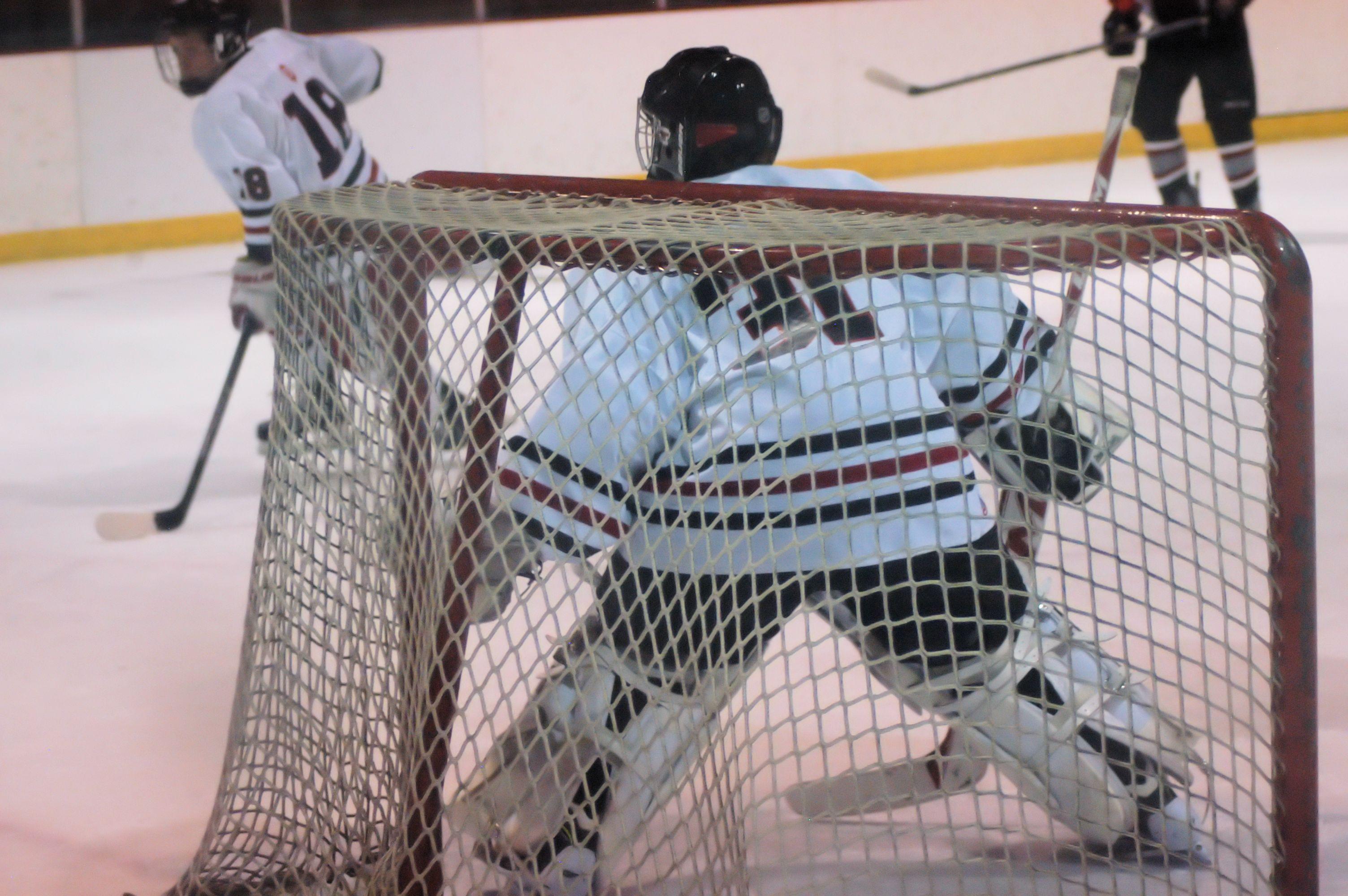 Brother Centre four hockey league midget
