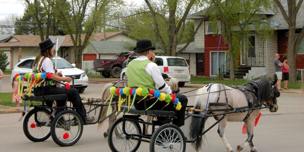 parade ponies
