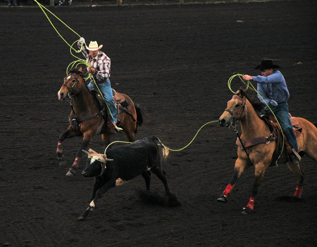 team roping2 day2