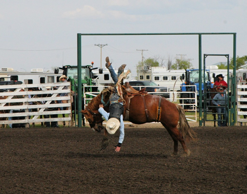 rodeo thrills and spills
