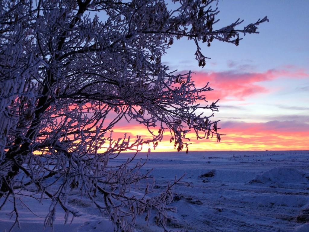 Rural Saskatchewan, Canada