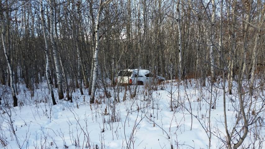 auto thefts in West Central Saskatchewan
