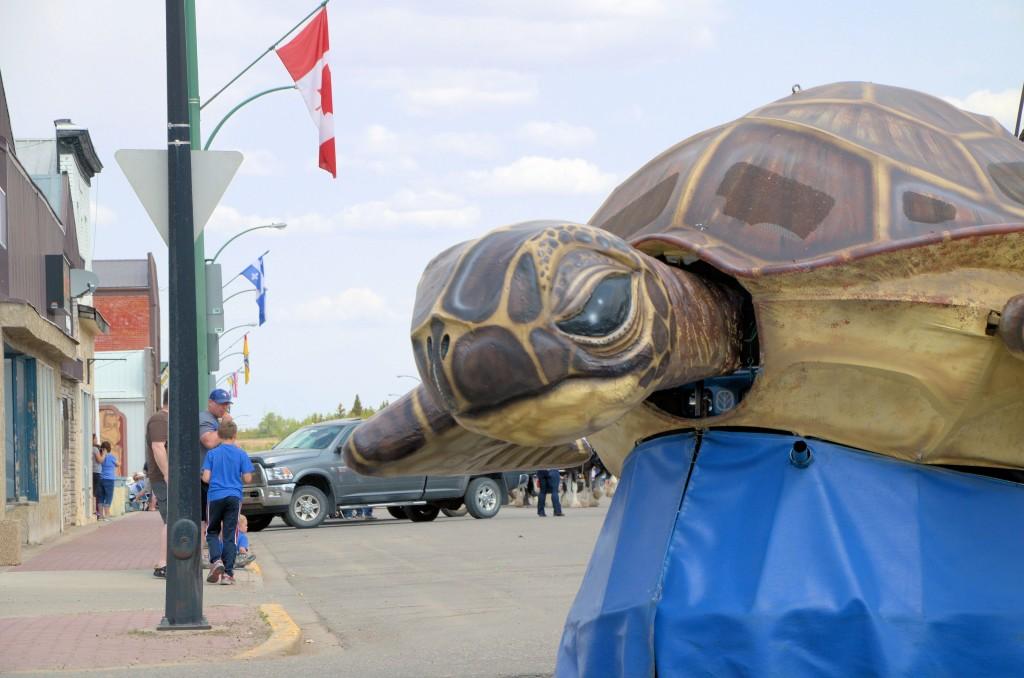 KOC's Unity turtle