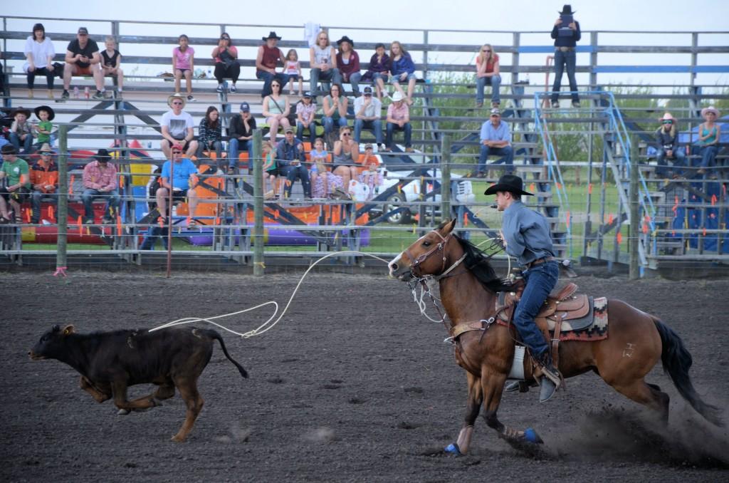 rodeo calf wins