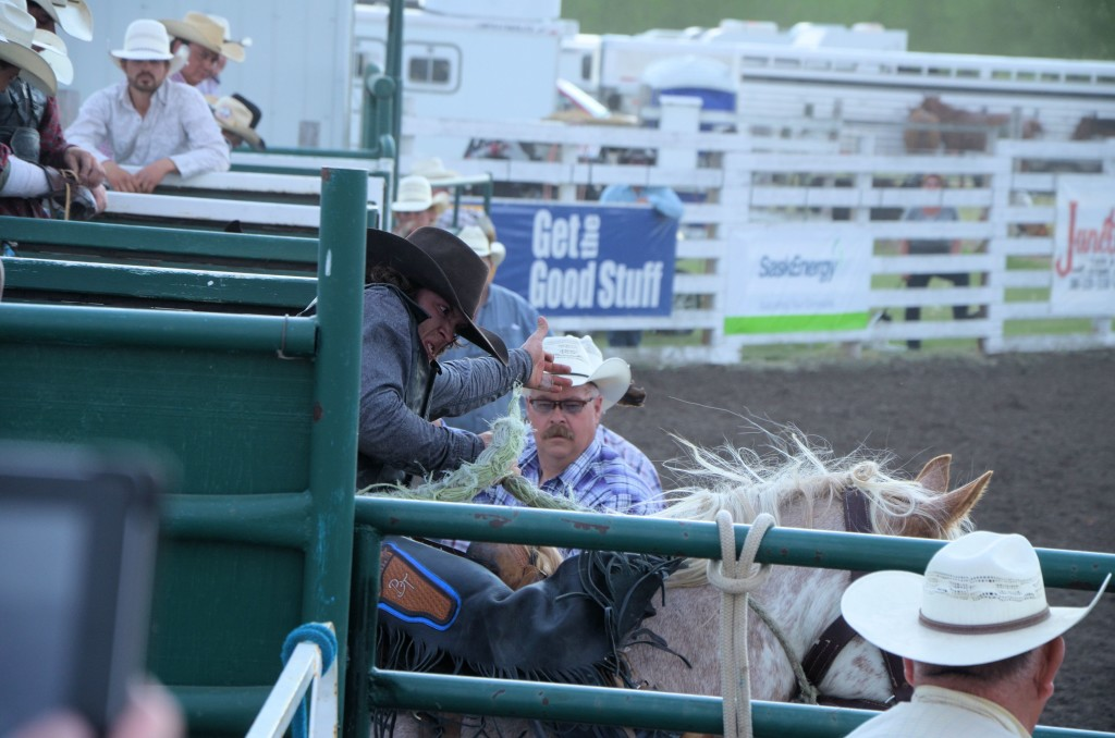 rodeo out of the chute