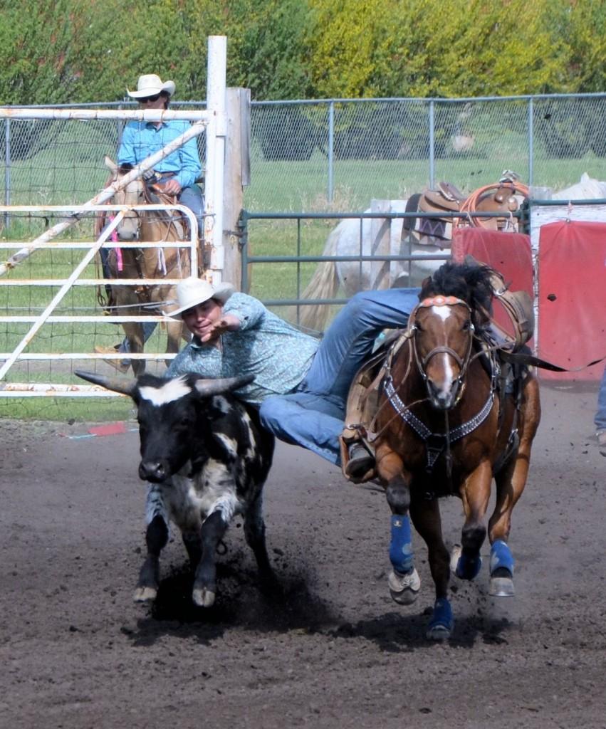 rodeo steer wrestling2