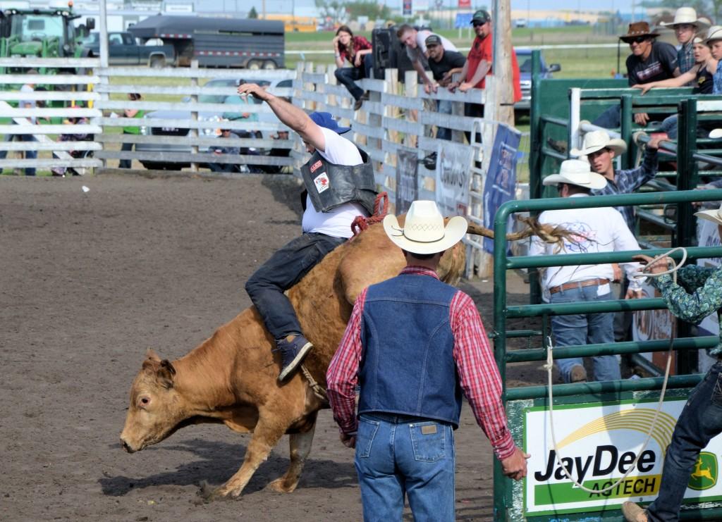 Unity Western Days, Celebrity Bull Riding