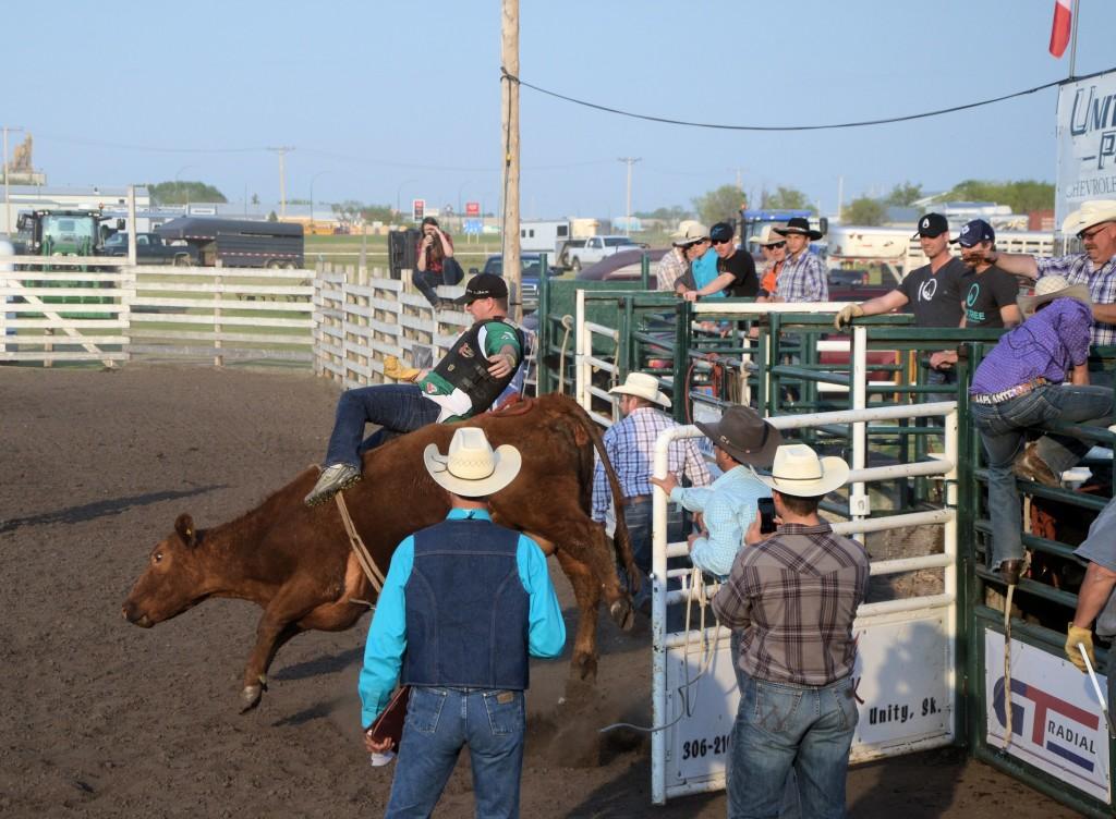 Celebrity Bull Riding at Unity, Saskatchewan