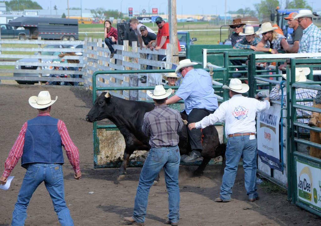 Out of the chutes ...