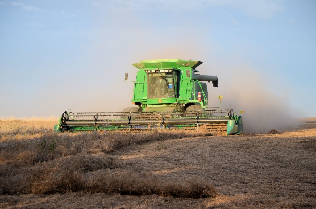 harvest time in Saskatchewan